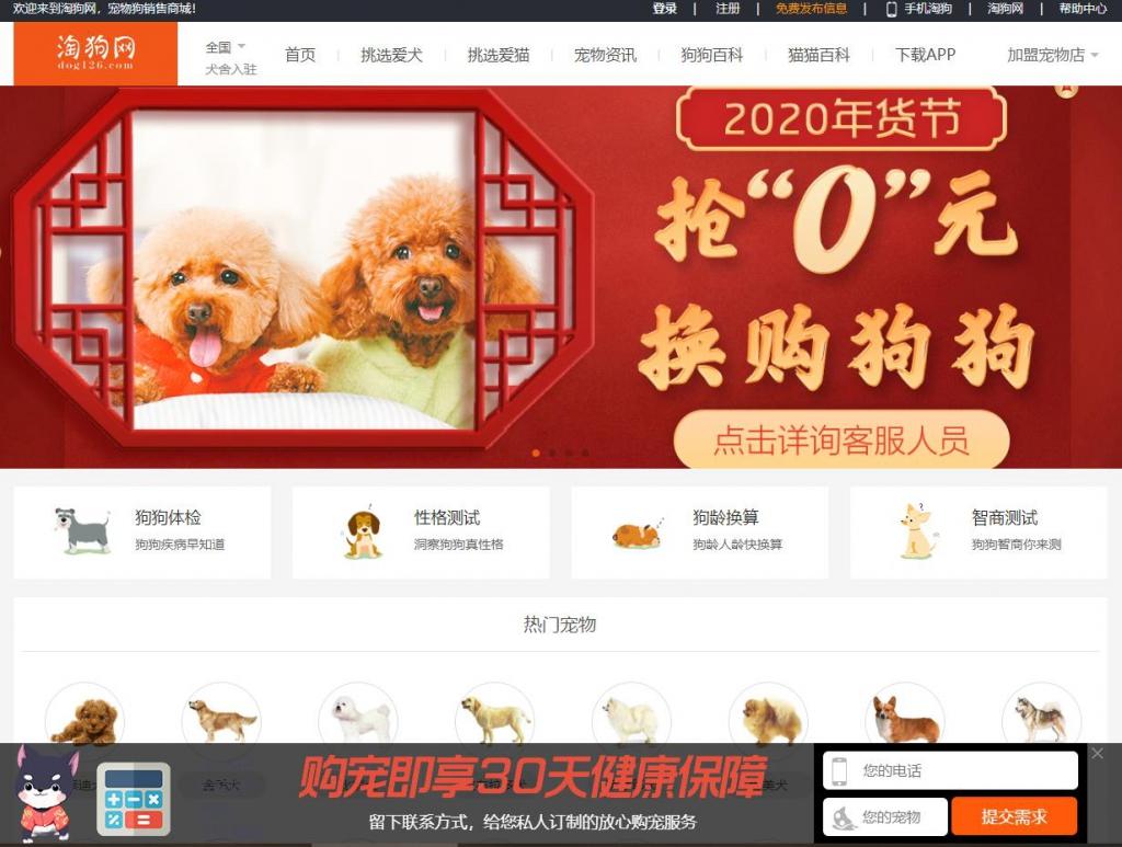 淘狗网(dog126)中国宠物狗销售商城