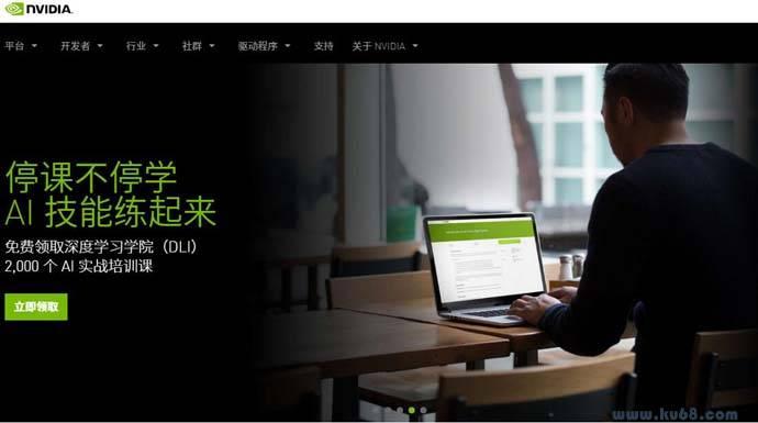 NVIDIA_英伟达:视觉计算技术的行业领袖